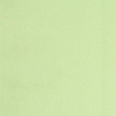 Laminated Waterproof Fabric in Light Green Fabric Traders