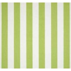 Canopy Stripe in White and Kiwi Home Decor Cotton Fabric Fabric Traders