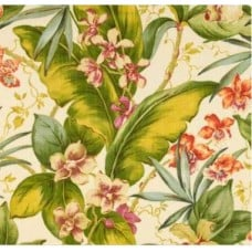 Paradise Point Fresco Outdoor Fabric by Tommy Bahama Fabric Traders