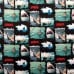 Sharks Jaws Quilting Clothing Craft Cotton Fabric Fabric Traders