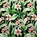 Tropical Floral Naya Indoor Outdoor Fabric in Black Fabric Traders