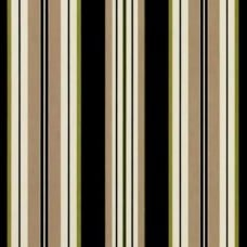 Striped Bands Outdoor Fabric in Black and Green