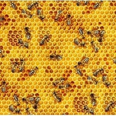 Honeycomb Bees Cotton Fabric in Honey