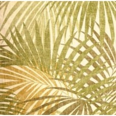 Bahama Cotton Home Decor Fabric in Sage by Magnolia Home Fashions