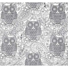 Colour Me Owls Cotton Fabric in White by Michael Miller