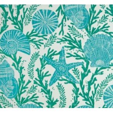 Cove Shells and Starfish Green Indoor Outdoor Fabric in by P Kaufmann Fabric Traders