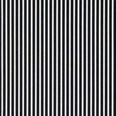 Stripe Carrie Black and White Home Decor Cotton Fabric