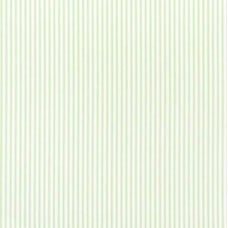 Ticking Stripe Cotton Fabric in Kiwi