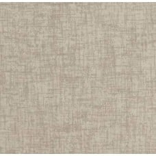 Solid Woven Style Indoor Outdoor Fabric in Natural Beige