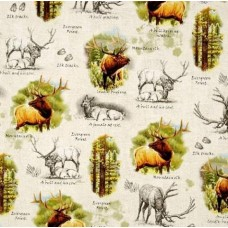 Elk Portraits Cotton Fabric in Stone