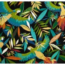 Solar Birds Outdoor Polyester Fabric in Black Fabric Traders