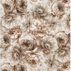 Meredith Floral Full Bloom Ivory Cotton Fabric by Robert Kaufman