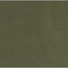 Corduroy Medium Wale Fabric in Olive