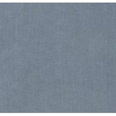 Corduroy Fabric in Grey