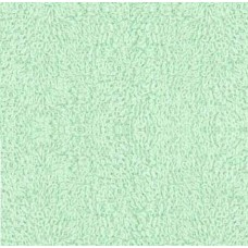 Terry Towelling Light Green 100% Cotton High Quality fabric