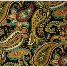 Bold Paisley Indoor Outdoor Fabric in Black