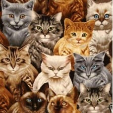 Cats Packed in Natural Cotton Fabric by Michael Searle Fabric Traders
