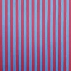 Tent Stripe in Blue and Red Cotton Fabric by Tula Pink