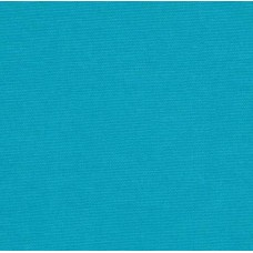 Solid in Turquoise Atlantis Outdoor Fabric
