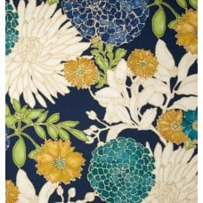 St Moritz Carribbean Home Decor Fabric by Richloom