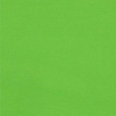Laminated Waterproof Fabric in Apple Green