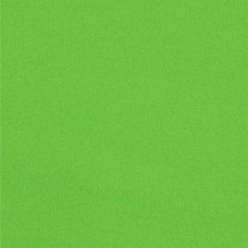 REMNANT - Laminated Waterproof Fabric in Apple Green