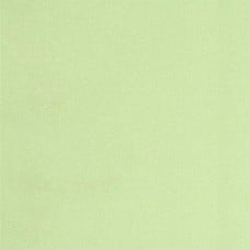 Laminated Waterproof Fabric in Light Green