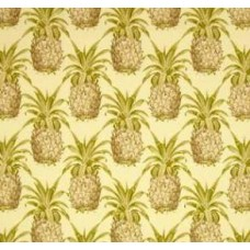 Pineapple Sun n Shade in Natural Outdoor Fabric by Waverly