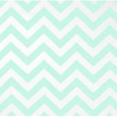 Chevron Zig Zag in Mint Home Decor Fabric