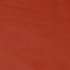 Vinyl Fabric in Burnt Orange